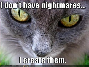 funny-pictures-evil-cat-creates-nightmares